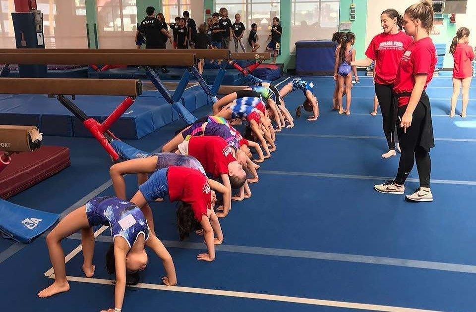 Starting a gymnastics business